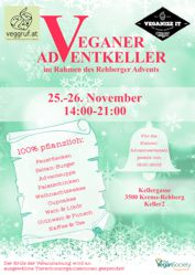 2017 adventflyer 175x265